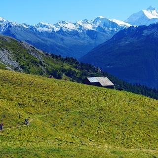 Vététistes sur le tour de Rinderhütte à Jeizinen