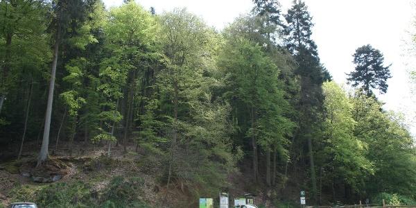 Wanderparkplatz Fasanerie
