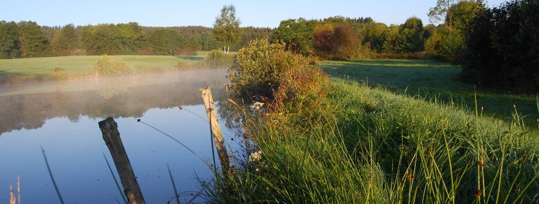 Naturschutzgebiet Muschwitztal, Foto: Ralf Oelschlegel