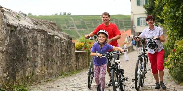 über Besigheim und Walheim zum Neckar