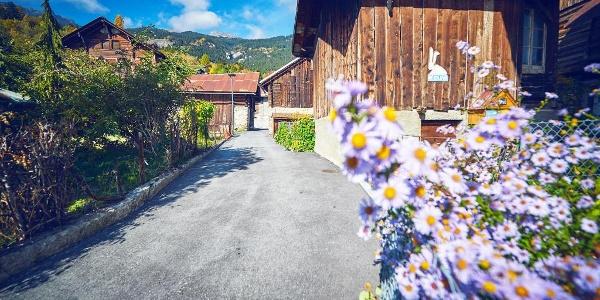 Dorf Mollens