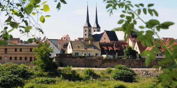 Blick auf die Altstadt Grimma