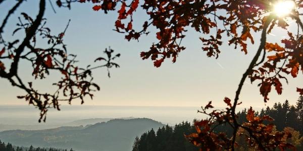 Aussicht von der Meinstorf-Kapelle