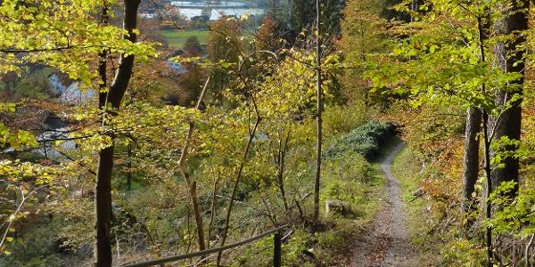 Gaueserwaldweg