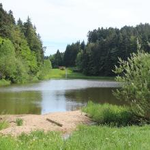 Hagerwaldsee