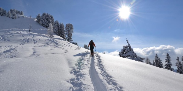 Ascent to Loosbühel