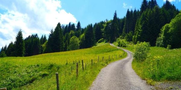Zwischen Hüttenberg und Alpe Eck