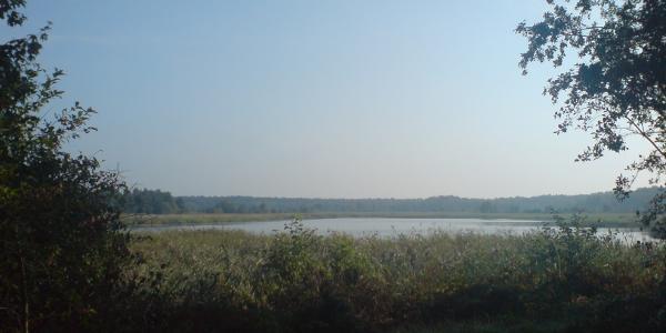 Einer der vielen Teiche der Teichgruppe Schlepzig