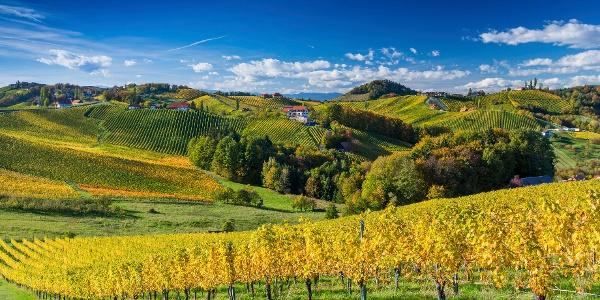 Blick auf den Naturpark Südsteiermark vom Weingut Bullmann aus