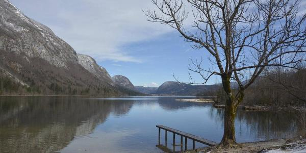 Lake Bohinj shore from Ukanc.
