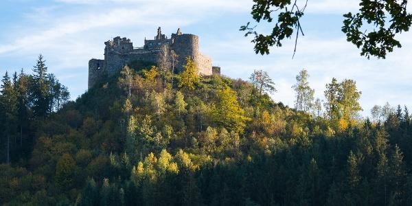 Burgruine Taggenbrunn