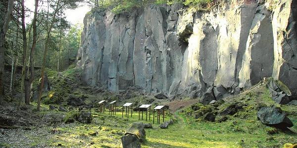 Vulkanpark-Radweg_Kottenheimer Winfeld