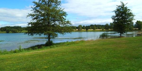 Blick auf den Albrechtshainer See © TVLN