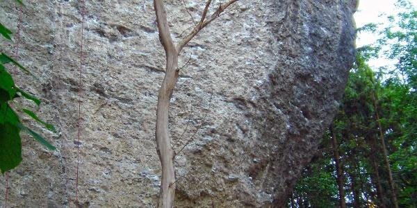 Klettergarten Bürser Schlucht