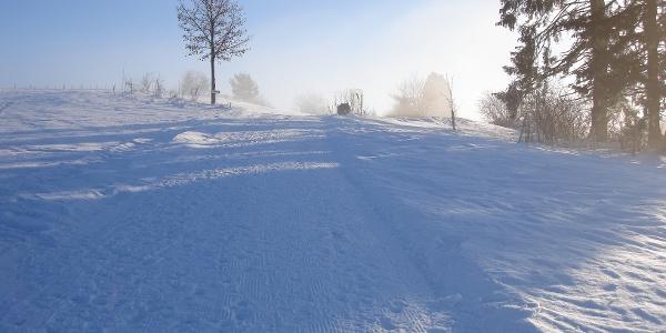 Winterlandschaft am Hanusel Winterwanderweg (3)