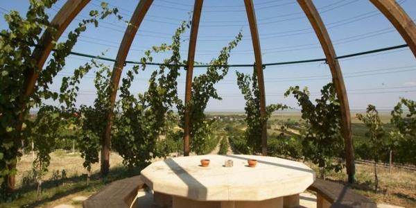 Weinlaubenkuppel