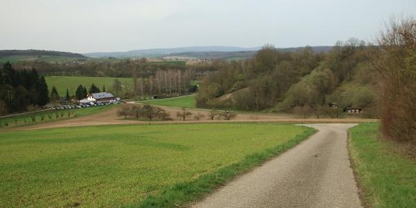 Blick auf den Tierpark Balzfeld und den Odenwald