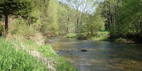 Kleine Raabklamm bei Oberdorf