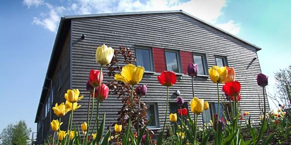 Outdoor inn mit Wiese im Frühling