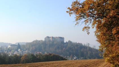 Buchbergsicht auf Burg Neulengbach