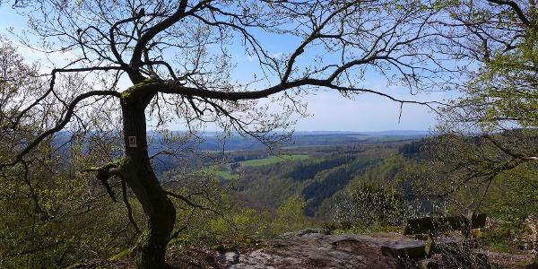 Blick vom Aussichtspunkt Steinbruch