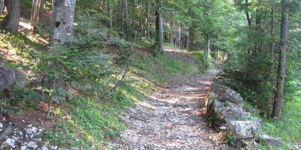 Il sentiero del Mülpoch