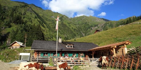 Kreealm-Kreehütte, 1.483 m