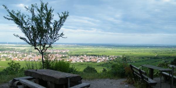 Blick von der Michaelskapelle auf Deidesheim.