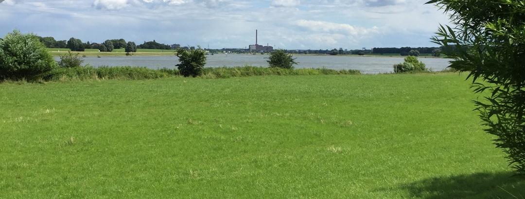 Rhein bei Duisburg