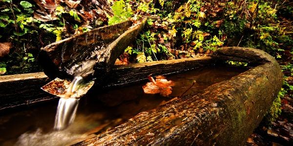 Brunnen Wildried Strecke