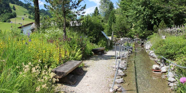 Kneippbecken im Alpengarten