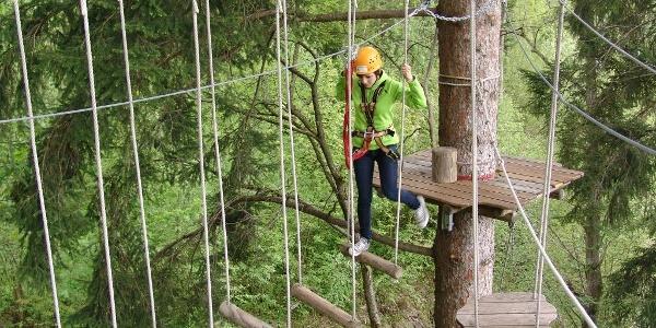 Kletterspaß im Waldseilgarten Höllschlucht