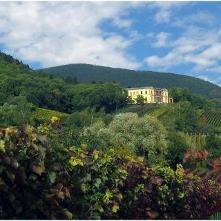 Villa Ludwigshöhe im Herbst