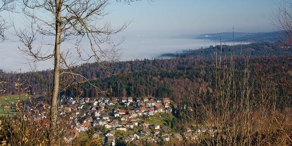 Bernbach vom Mauzenberg