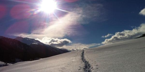 Spuren Oberfäld-Trail