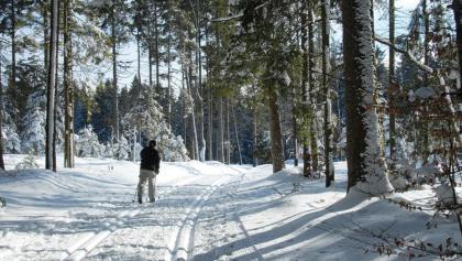 Langläufer- Loipenzentrum Hotzenwald