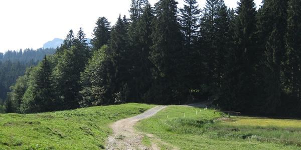 Wanderung Richtung Lustenauer Hütte