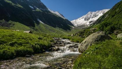 Bald kommen wir im Bergfrühling an