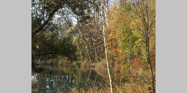 Auch im Herbst ist es am Alten Rhein schön