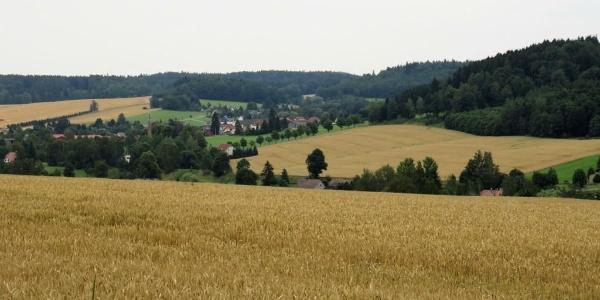 Blick nach Taubenheim/Spree
