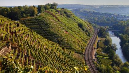 """Die """"Schönste Weinsicht"""" von Württemberg"""