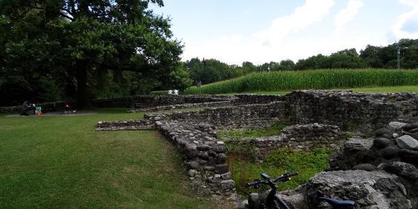 """0500 Ruine Freudenau   47°30'44.3""""N 8°14'02.5""""E"""