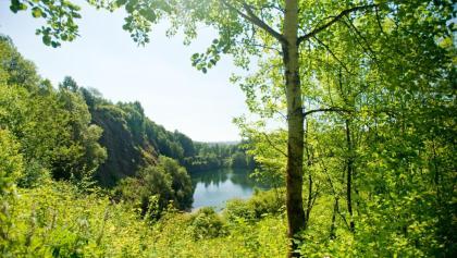 Basaltpark Bad Marienberg