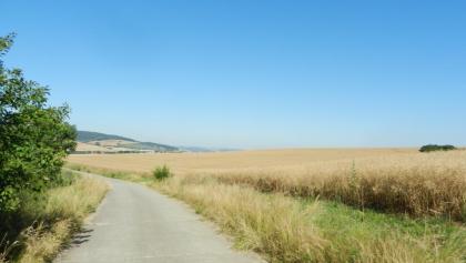 Landschaft hinter Mechterstädt