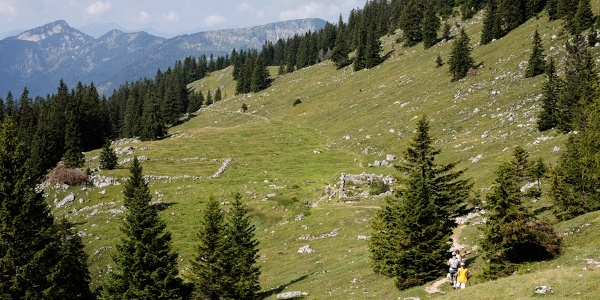 Wandern Richtung Hofbauernalm Kampenwand