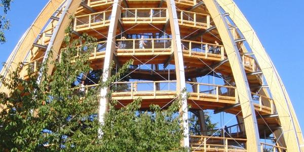 Der Höhepunkt des Pfades ist im wahrsten Sinne des Wortes der 44 Meter hohe Baumturm.