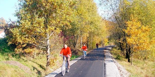 Radler entlang des Donau-Ilz-Radweges