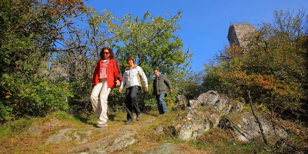 Felsenpfad am Koppenstein