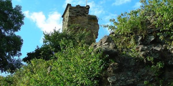 Hoch oben über dem Städtchen thront die Ruine Moschellandsburg.