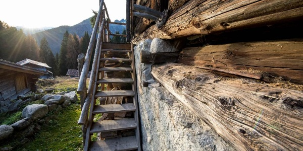Old wood ladder of Clemp mountains huts